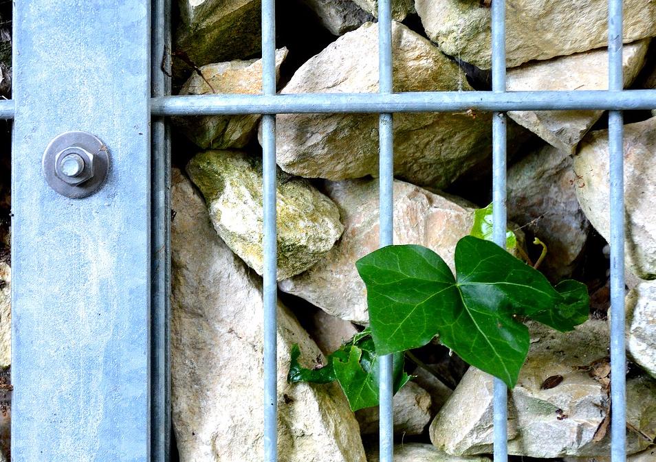 Steinzäune direkt aus dem Steinbruch